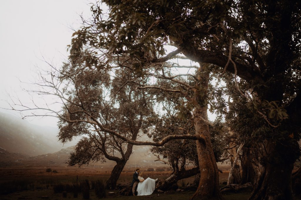 Isle of Mull Elopement - Couple sat underneath tree.